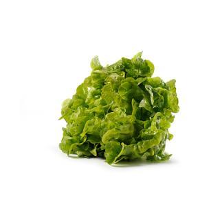 -Salat Batavia