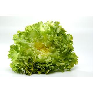 -Salat Endivien