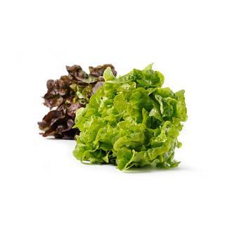 Salat der Woche - je nach Angebot wechselnde Salatvariantion
