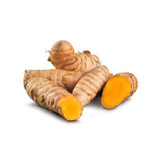 Kurkuma-Wurzel  frisch  (Ingwerverwanschaft - tief gelb färbend)