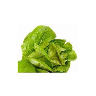 kleiner Blattsalat - nur bei Verfügbarkeit