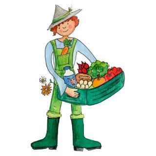 Aktion Tomatenpflanze  Balkontomate  bis 31.5.19