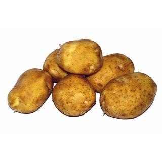 Kartoffel - festkochend