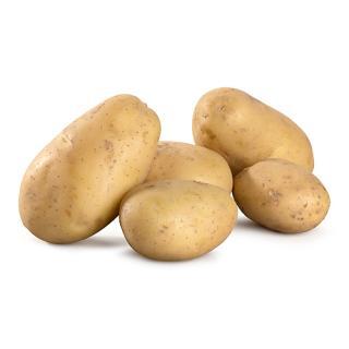 """Frühkartoffel """"Drillinge"""" - kleine Butter-/ Party-Kartöffelchen"""