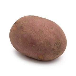 -Kartoffel- Rote Laura, vorwieg.festkochend, außen rot innen weiß