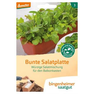 Saatgut Bunte Salatplatte Salatmischung