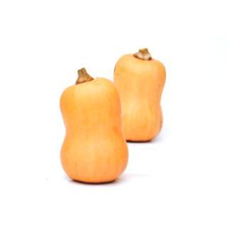 -Kürbis Butternut (gelbe ovale Birn-förm5tg)  1,8-2,8kg/St