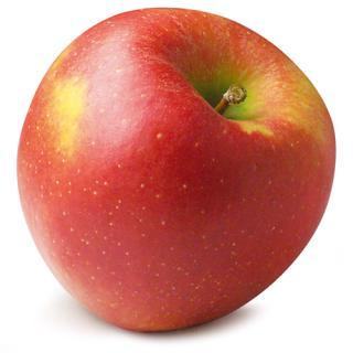 -Äpfel Jonagored / Jonagold  Schlachtenberger