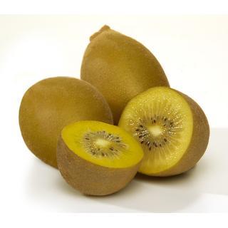 Kiwi gold - (Stückartikel)